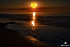 Carolina Moon by Jim Crotty (jimcrotty.com) Tags: ocean moon beach night mystical rise lunar jimcrotty calmphotos ohionaturephotographer