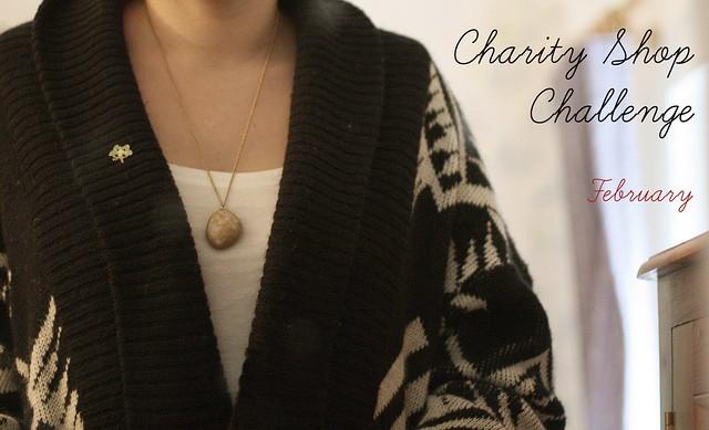 Charity Shop Challenge :: February