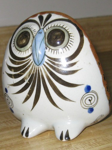 Owl front