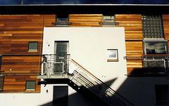 External View - Cedar