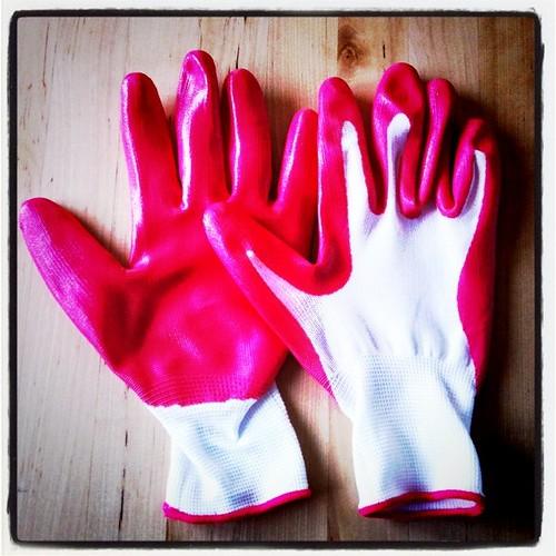 gloves! - 53.365