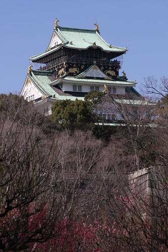 大阪城と梅 / With Osaka-jo Castle