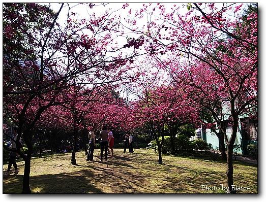 前山公園3