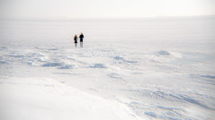 (miemo) Tags: winter sea people snow seascape ice sunshine finland landscape helsinki couple europe outdoor empty outoffocus shore hlc holgalens holgaef gettyimagesfinlandq1