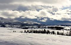 Into the distance... ( Brenda ) Tags: winter snow yellowstone wyoming nikond5000 brenda0206