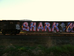 Shark Kts (Sk8hamburger) Tags: train painting graffiti shark paint tag dna boxcar piece tagging kts freight ther grainer kmv peninsulaterminal dnak