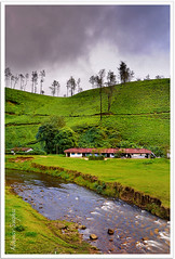 Stream (Abhinav Singhai) Tags: vacation india mountains water tea vibrant tammy tourist traveller getty tamron munnar d90 incredibleindia teavalley nikond90 munnartea tamron1024mm gettytravel gettyindia gettytourist