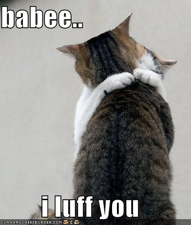 Love You Lolcat. to get the URL lolcats-