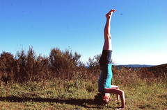 sirsasana II (lila yoga) Tags: yoga inversion practice asana headstand sirsasana sirsasanaii