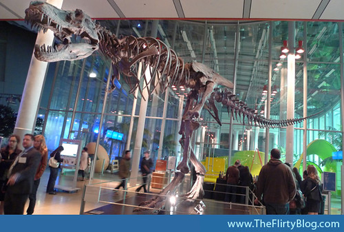 ca-academy-of-sciences-tyrannosaurus-rex-skeleton