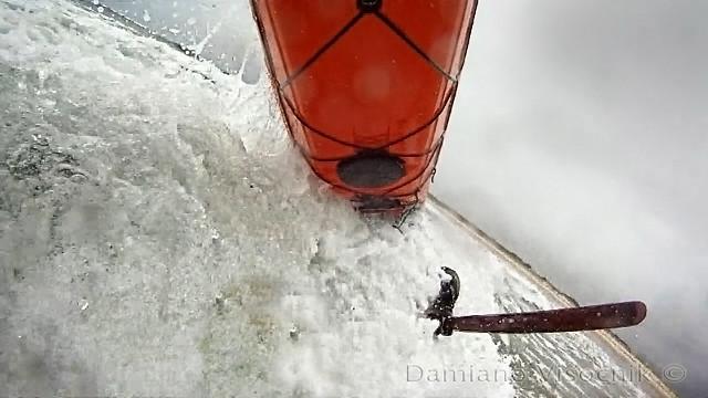 Zegul surf_1