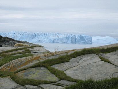 Hund og isfjelll,foto:Anne C. Silviken