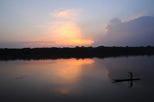 Expédition Sangha 2010 : fleuve Sangha