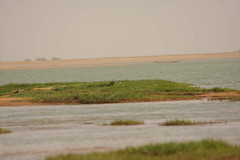 West Africa-5124
