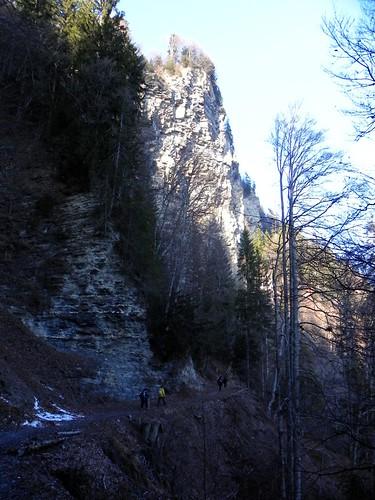 Hautes falaises de schiste au dessus du chemin au Passieu 088b