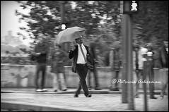 la lluvia desdibuja (packer105) Tags: urban bw paris monocromo lluvia bn urbano paraguas paisajeurbano porlacalle packer105