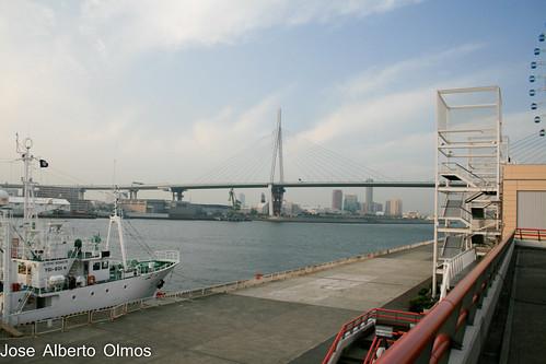Bahia de Osaka