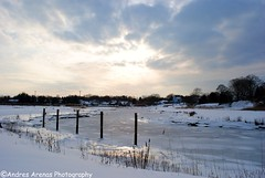 Frozen (Andres Arenas) Tags: winter sun snow ice water connecticut ct shore poles landscapeclinton