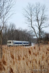 Metro North shuttle train to Southeast (grumpyff) Tags: railroad train mta locomotive metronorth brookville doverplains bl20gh