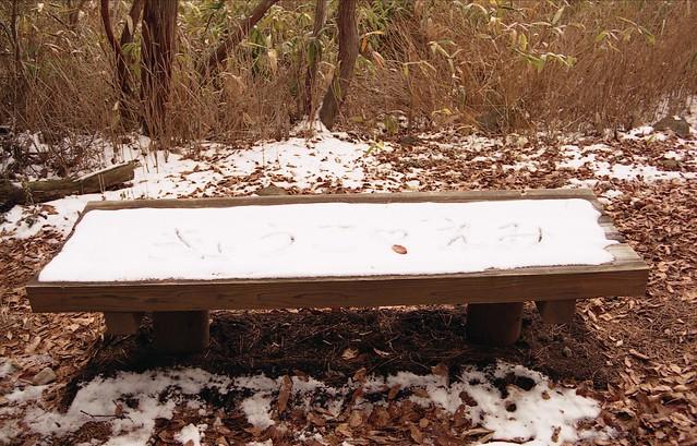 雪残るベンチのフリー写真素材