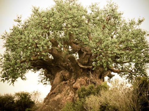 Tree of Life v1