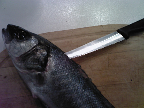 fish filleting 01