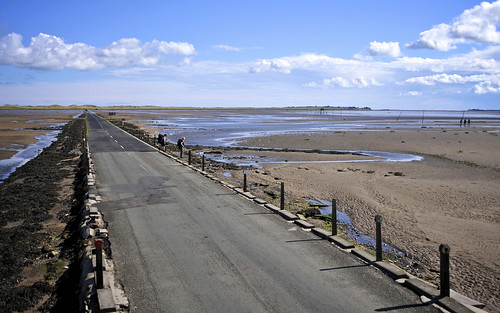 Causeway From The Refuge