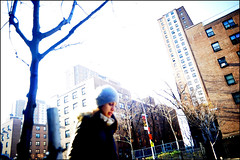 cold day (Matthew Vinci) Tags: street newyorkcity people newyork cold color photography women chelsea streetphotography vinci matthewvinci