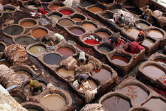 A Bad Dye Job (Qiche) Tags: old city people color colour men pits leather work person northafrica working middleeast morocco fez medina dye fes tannery tanneries