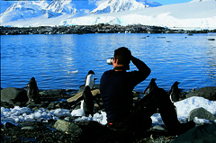 Client photographing penguins (Exodus Travels - Reset your compass) Tags: travel holiday travelling photography penguins travels holidays xx wildlife antarctica trips polar exodus exodustravels
