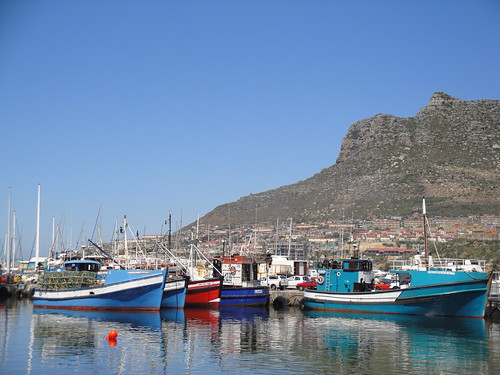 The fishing boats at Hout Bay, South Africa