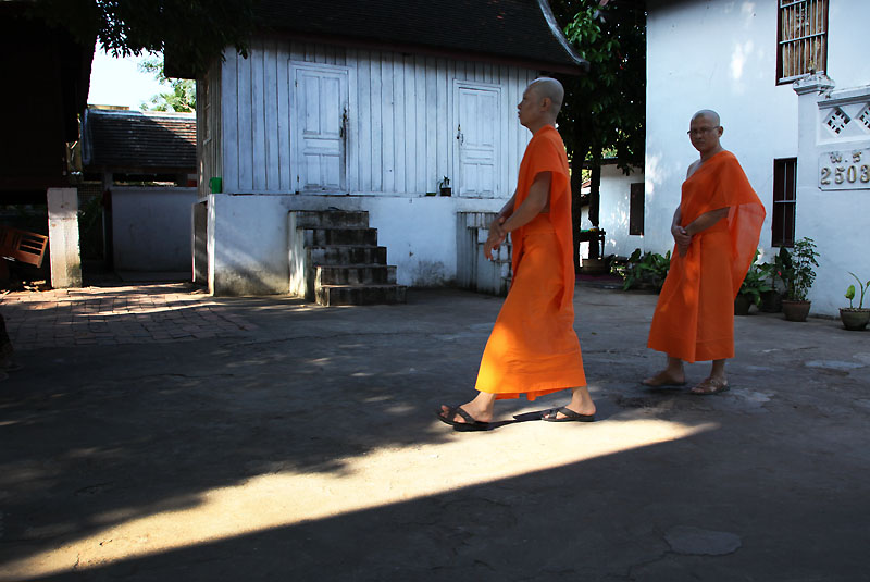 Monk IMG_0919-w
