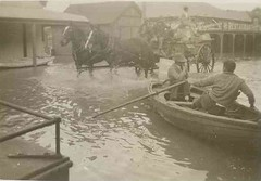 Floods at Mannum, 1931 (State Library of South Australia) Tags: horse wagon boat flood murrayriver mannum