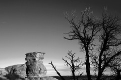 Desertscape BW (Molly Dog Images (Not sized for printing)) Tags: blackandwhite rural utah intense moody desolate epic sanrafelswell sphynxrock
