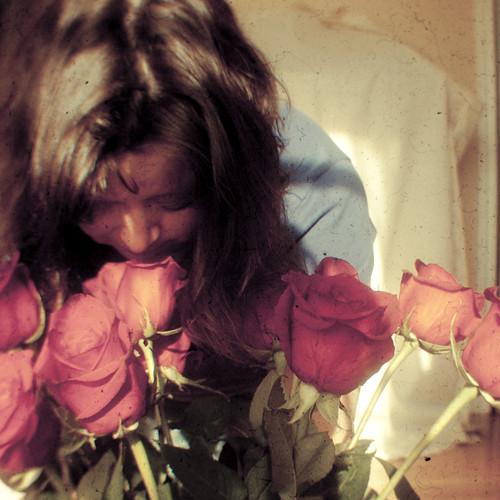 59:365玫瑰和我的电视