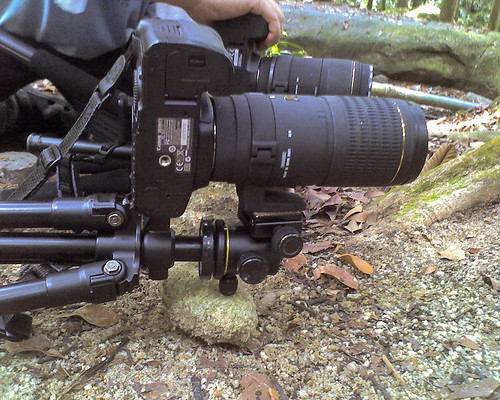 tripod for macro photography 17-02-11_1350 copy