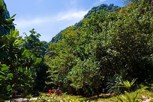 National Reserve Park at Maya Island