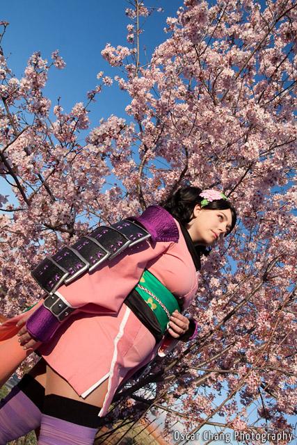 Sakura2011_1156