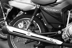 roda (Edite a. perrotta) Tags: transporte motoca motosbikes