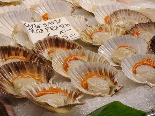 scallops