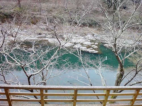 kyoto arashiyama 8_1