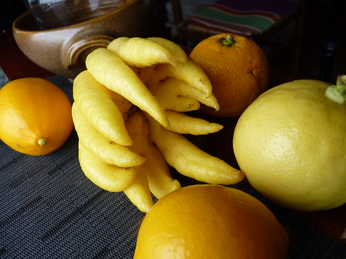 Main de Boudha et divers citrons