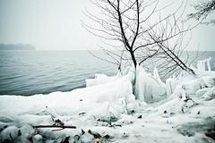 Pln ( Angeles Antolin ) Tags: lake ice germany lago deutschland see angeles alemania eis hielo antolin hoyos pln