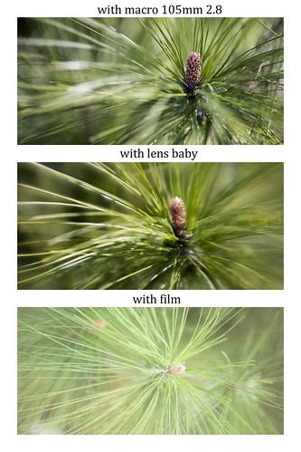 Macro, lens baby, and film