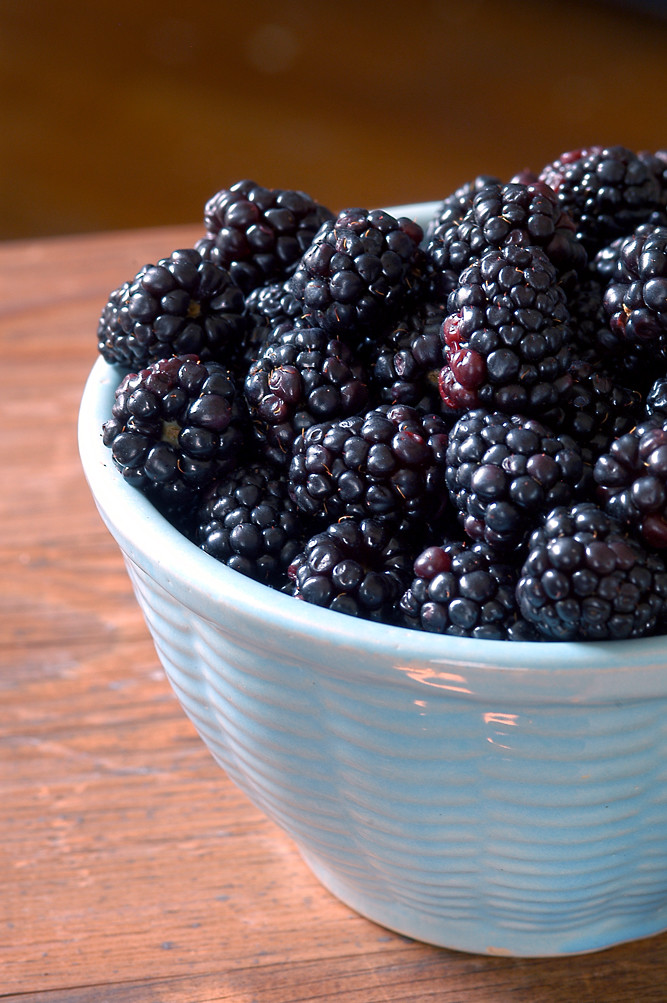 little blue bowl blackberries