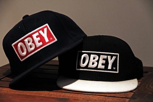 lippikset_obey