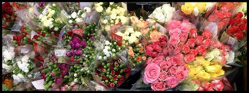 [10/52] Flowers