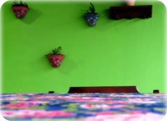 Domingo ... (Joana Joaninha) Tags: casa vaso parede suculenta chito joanajoaninha varnda
