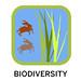 IGOR chip- biodiversity 150