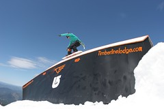 - Timberline snowboard_summer